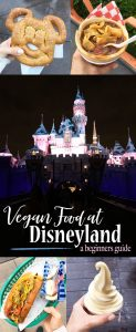 Vegan Food options at Disneyland and California Adventure