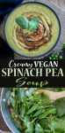 Vegan creamy spinach pea soup