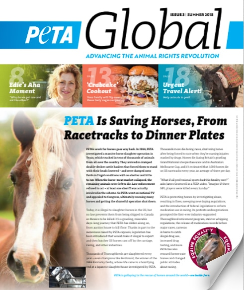 Cover of the PETA Global magazine