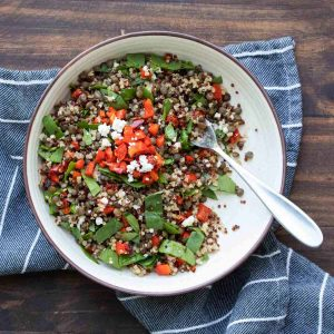 White bowl with a salad with lentils, spinach, quinoa and red peppers inside
