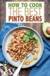 Overlat test on pinto beans with a photo of the beans on a grey plate