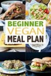 A collage of photos of vegan meals with overlay text about a vegan meal plan